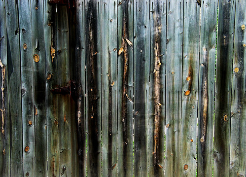 Stained Fence | by jbushnell