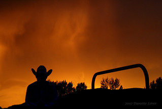 Sunset Cowboy | by Danette Loree