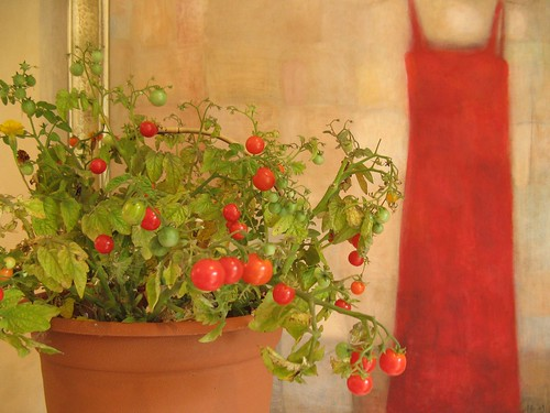 Cherry tomatoes | by Pille - Nami-nami