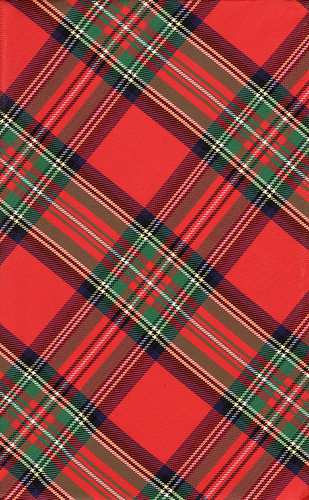 Plaid | by Calsidyrose