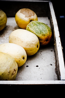 spaghetti squash (1 of 1) | by bell.ab
