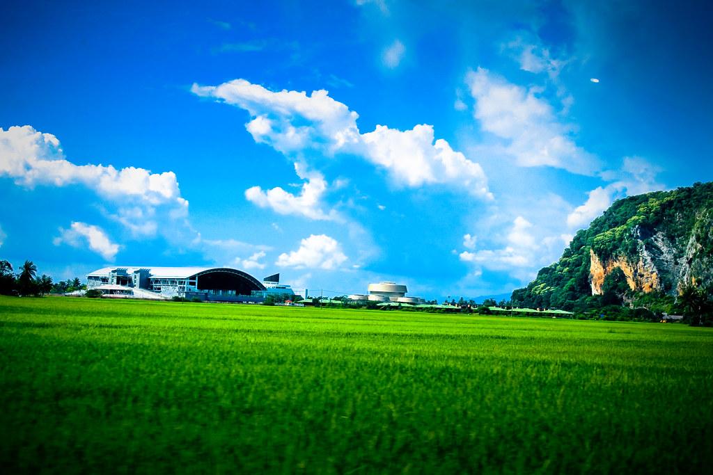 Image gallery sawah padi for Home wallpaper kedah