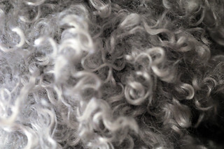 Curls Texture | by The Pack