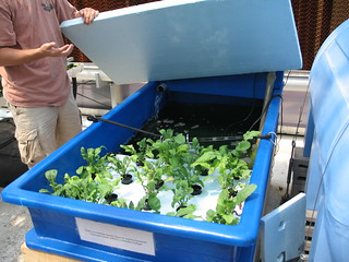 Science Barge: Aquaponics | by AIDG