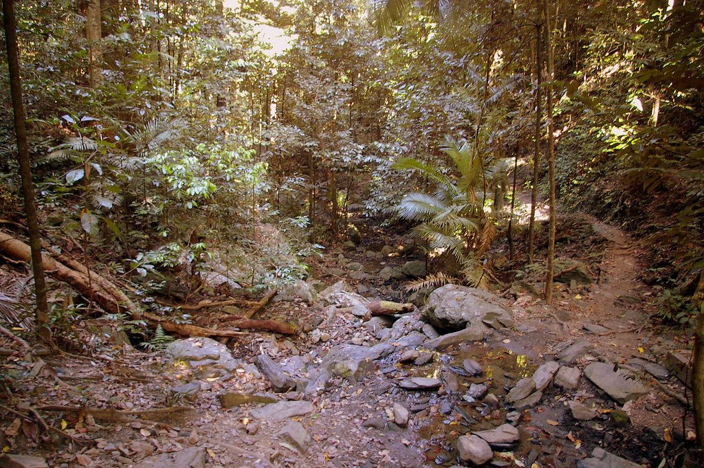 Mount whitfield conservation park