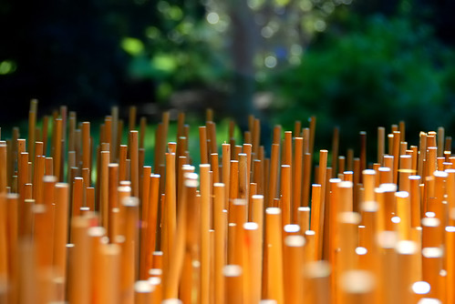 wood dowels for lanterns | by paul+photos=moody