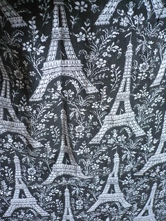 Eiffel Tower Print Skirt | by kathy10015