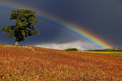 Tuscan Landscape - Fall with rainbow | by enzo.tiberi