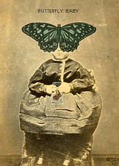 ATC Butterfly Baby | by queen bee you see