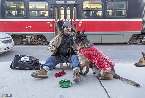 man and his dog toronto 4 | by Eva Blue