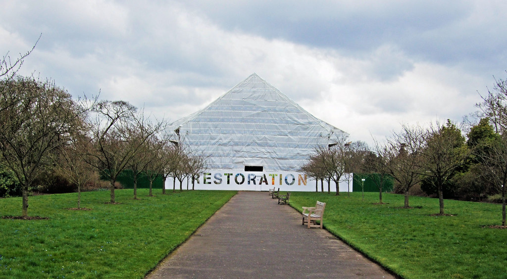 Temperate house restoration project