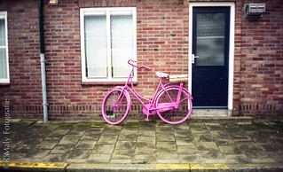 Pink bike (Tiara) | by René Maly