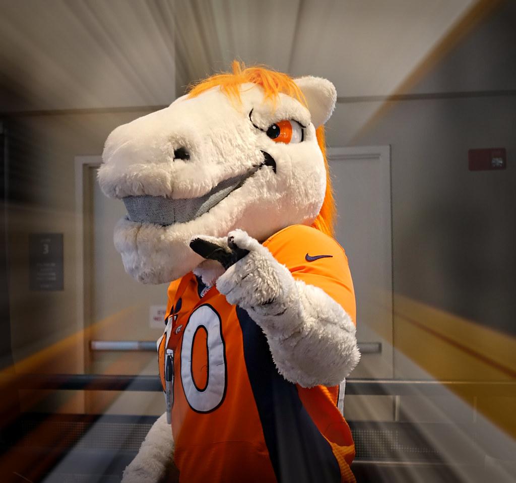 Miles Denver Broncos Mascot Denver Colorado Colorado Sands