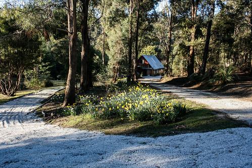 My House. Tasmania