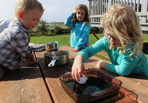 Imogen-Dipping-Eggs | by Farm Fresh To You -