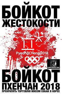 БОЙКОТ ПХЕНЧАН 2018 | by Koreandogs