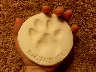 Little Ruthie left her paw print on my heart. | by Rosa Blue