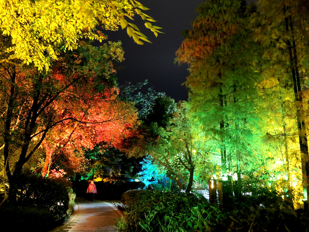 Colorful trees | GuangXi China 廣西桂林| MelindaChan ^..^ | Flickr