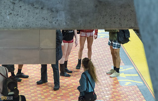 no pants subway ride montreal 2016 - 19 | by Eva Blue