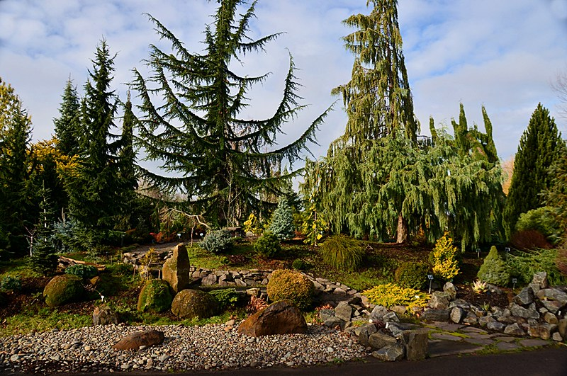 The Oregon Garden, Silverton, OR