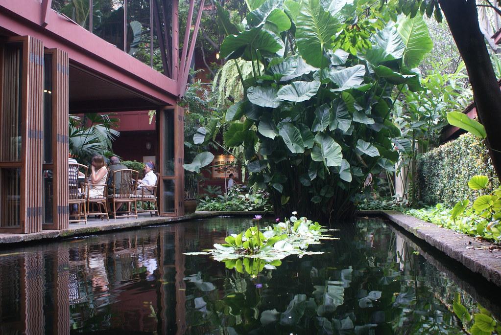 Magnifique plan d'eau entouré d'une végétation luxuriante au café de la Maison de Jim Thompson à Bangkok.