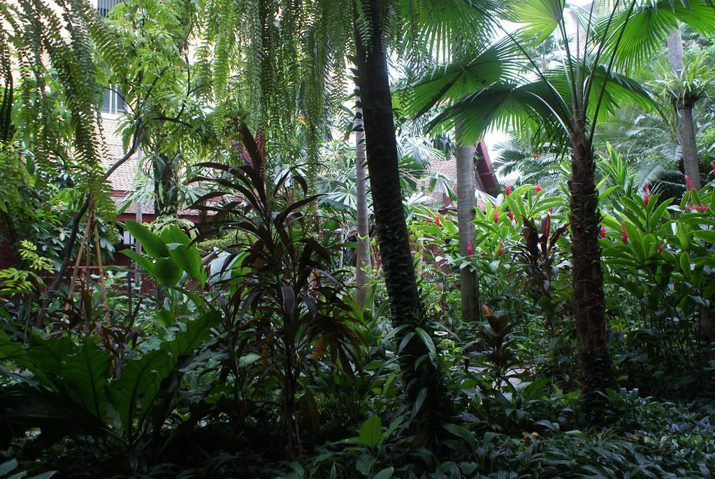 Bout de jungle dans le musée Jim Thompson au coeur de Bangkok.
