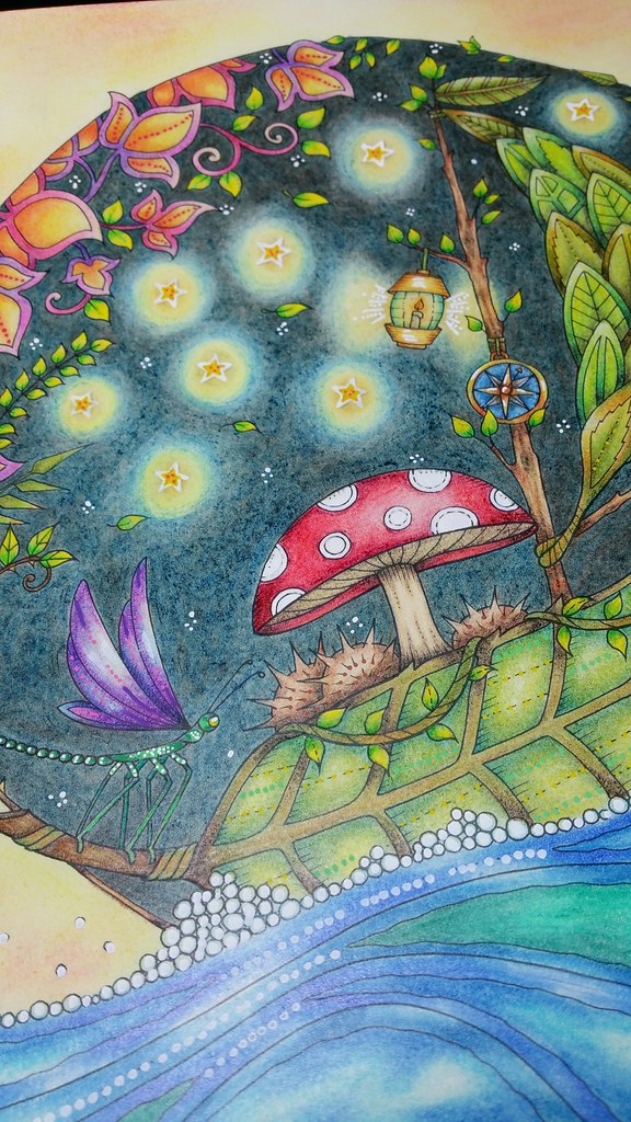 Boat From Johanna Basfords Enchanted Forest Colouring Book