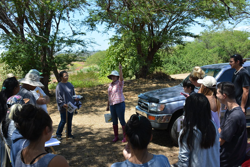 Pouhala Marsh Data Collection