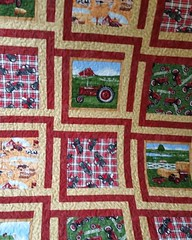 2nd quilt done this morning, for my nephew.