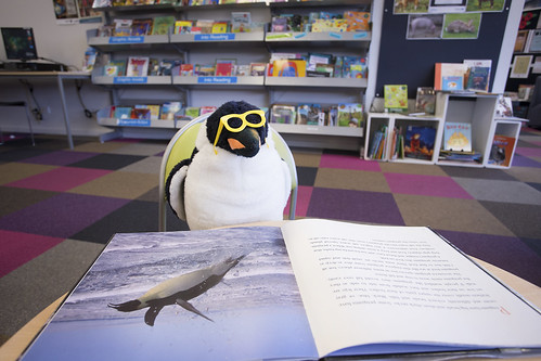 Penguin | by Christchurch City Libraries