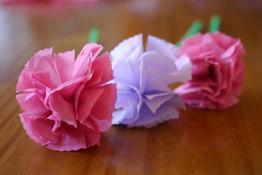 Paper carnation flowers waddling penguin flickr paper carnation flowers by waddling penguin mightylinksfo