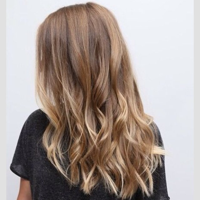 Summer Ready Hair Color Brown Blonde Highlights Soft Flickr