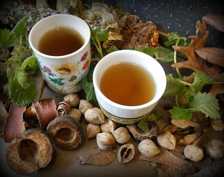 Nettle tea | by Baha'i Views / Flitzy Phoebie