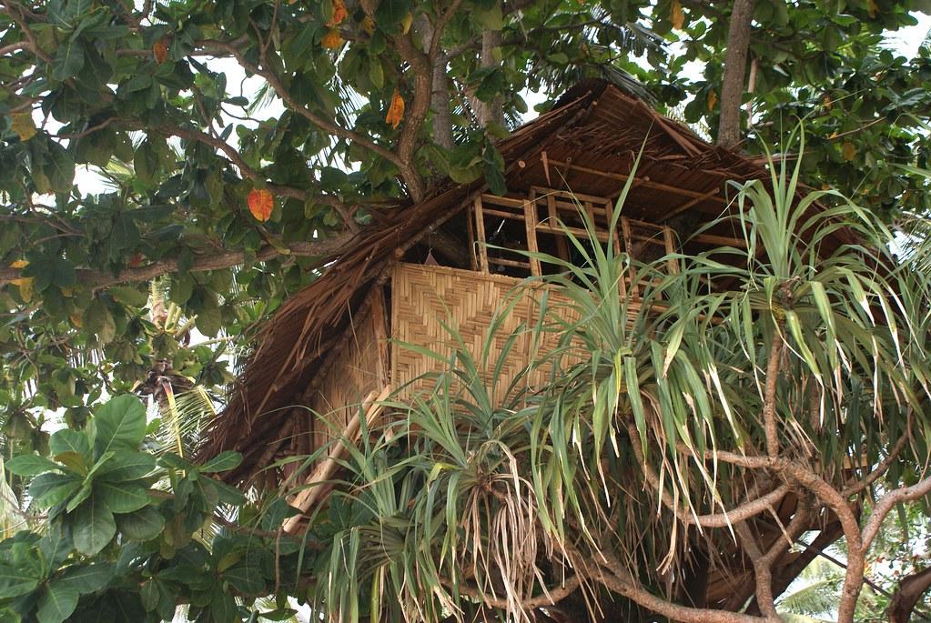 Une cabane haut perchée dans un arbre de l'île de Koh Lanta.