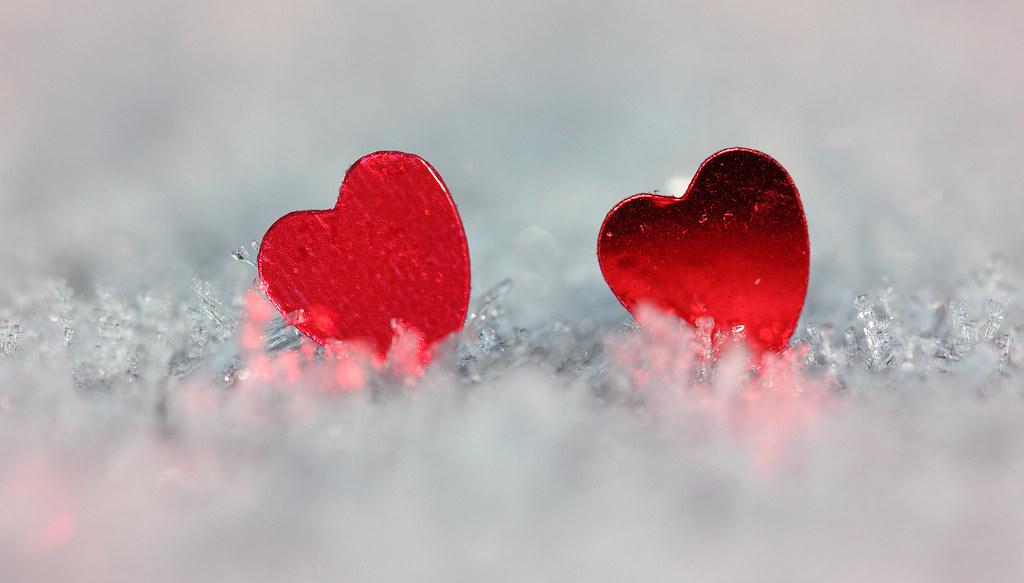 Two hearts | For today\'s Macro Mondays theme `hearts\', I had… | Flickr