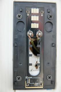 Install Ring Doorbell In English