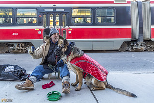man and his dog toronto 3 | by Eva Blue