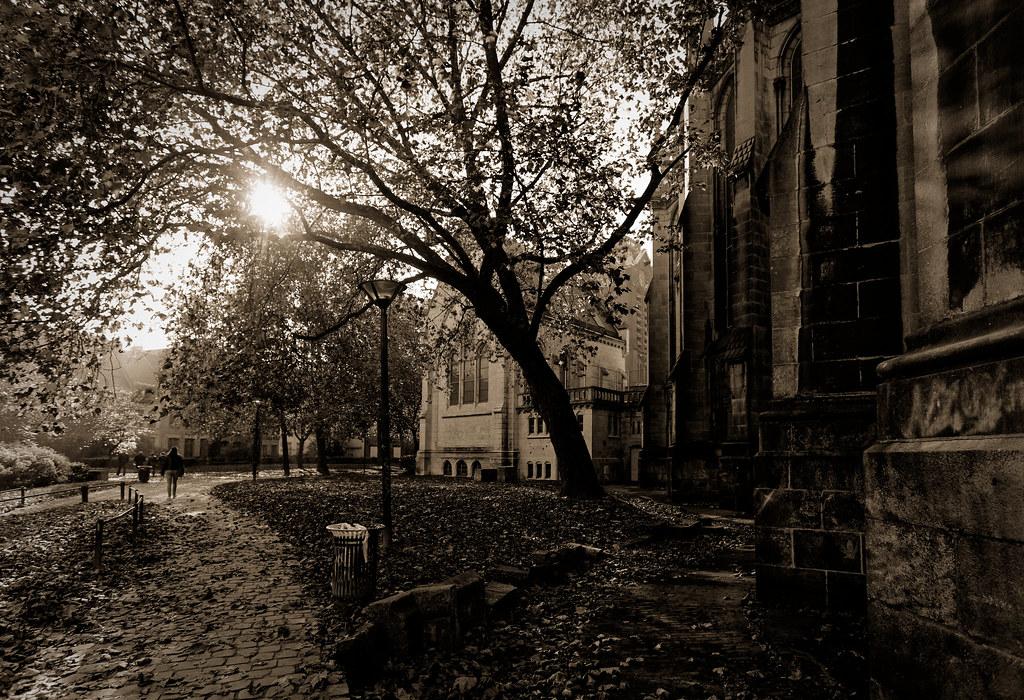 Souvenir d'une belle journée d'automne