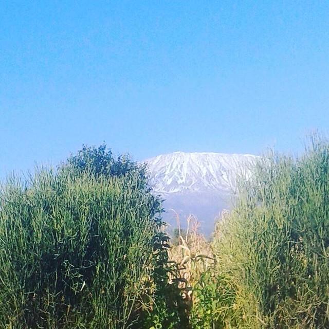 Loitoktok #Kenya view of #mtkilimanjaro #mtkili ##arusha #tembeakenya