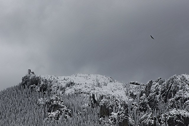 Harney Peak in the Snow
