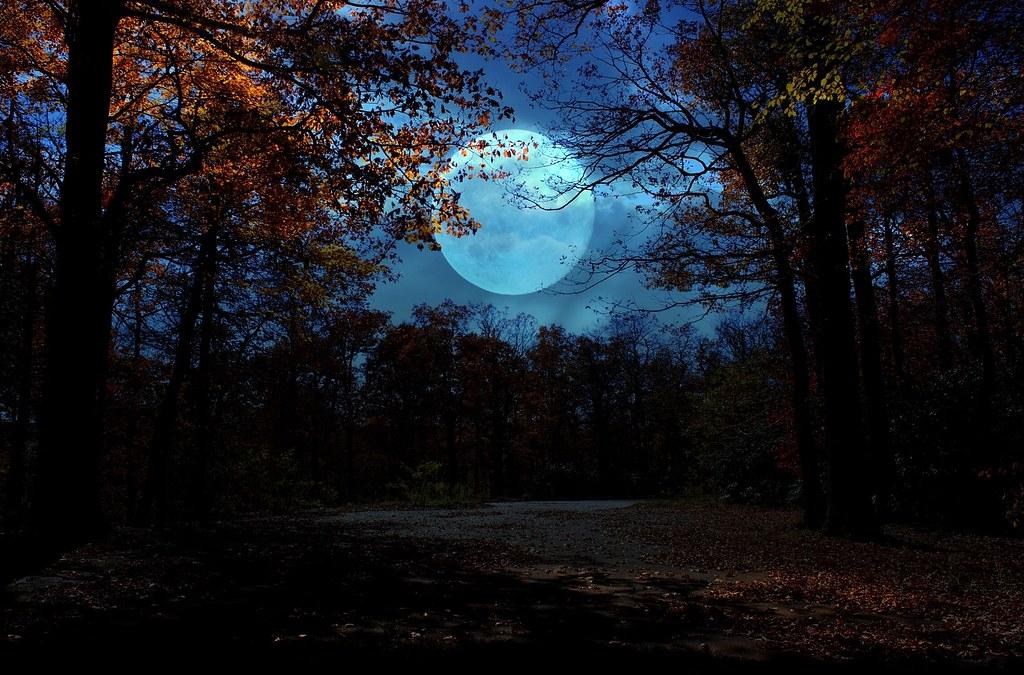 Autumn Moon autumn moon Lisa Holder Flickr