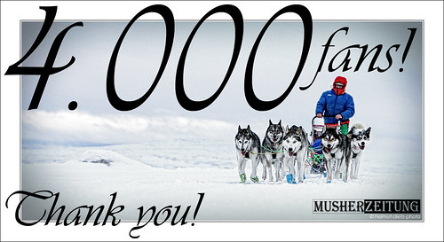 4000 fans! Musherzeitung at facebook | by dietz_helmut