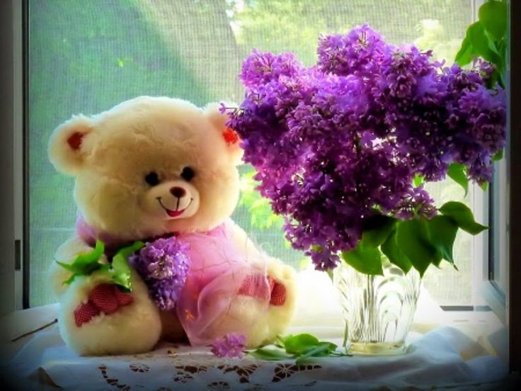 Happy Teddy Day Idea For WhatsAPP Facebook Pinterest Instagram
