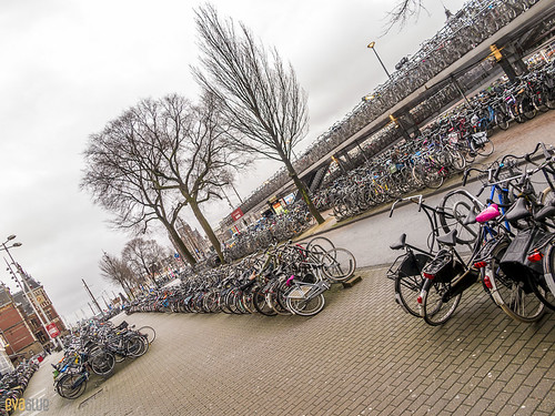 015 bicycles at Amsterdam Centraal railway station 2 | by Eva Blue