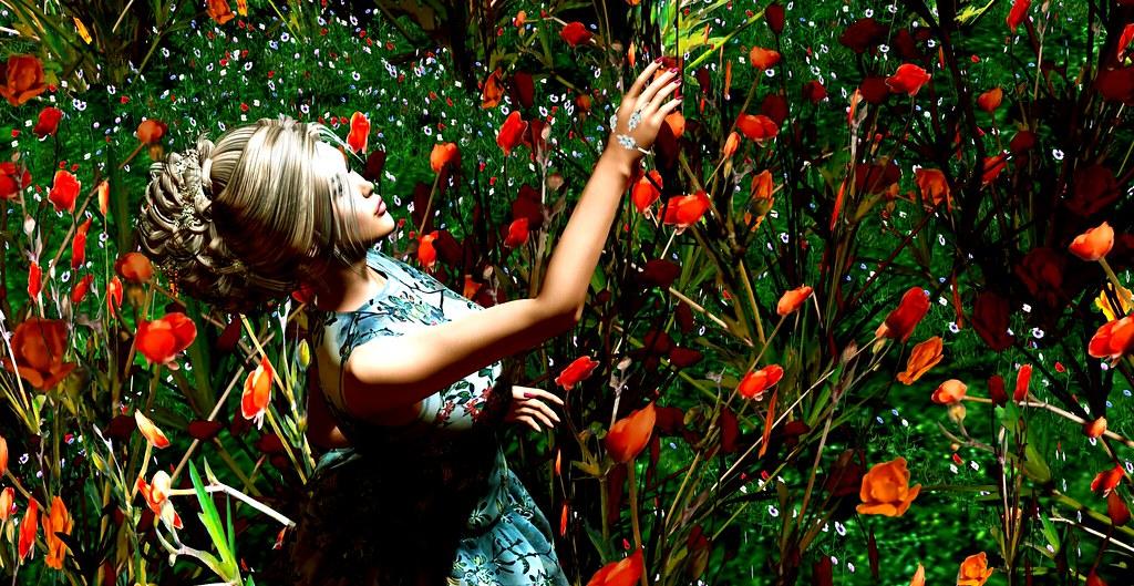 summer bloomer