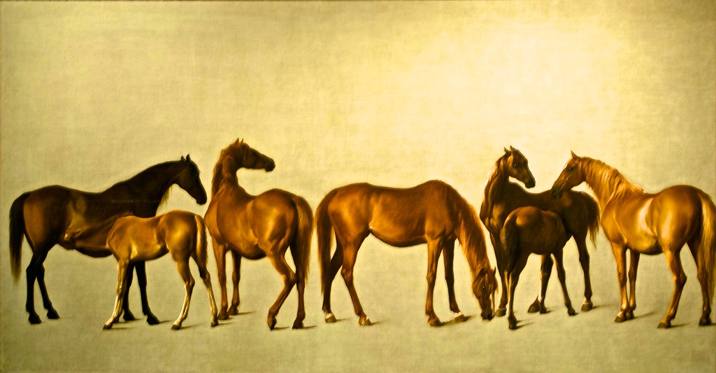 Mares and foals with an unfigured background (England,1762… | Flickr
