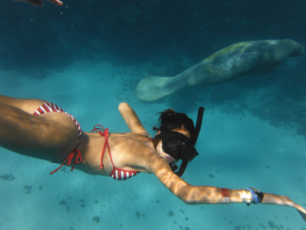 Excursión al arrecife, Cayo Caulker
