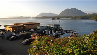 Tofino, BC Harbour | by MillicanD
