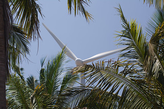 Coconuts and wind turbines | by peletiah