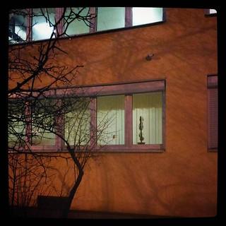 В бесчисленных одинаковых окнах Академии Связи - только один цветок! #явкапровалена? for #365days project, 65/365